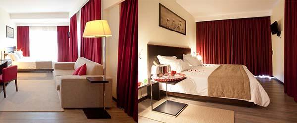 Hotel S Pedro Arouca